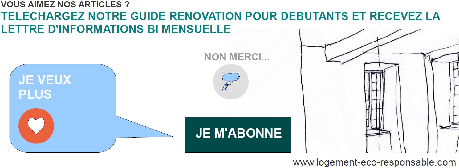renovationguidedebutant