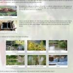Cr er une piscine naturelle en autoconstruction for Guide autoconstruction