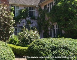 vegetation protection solaire