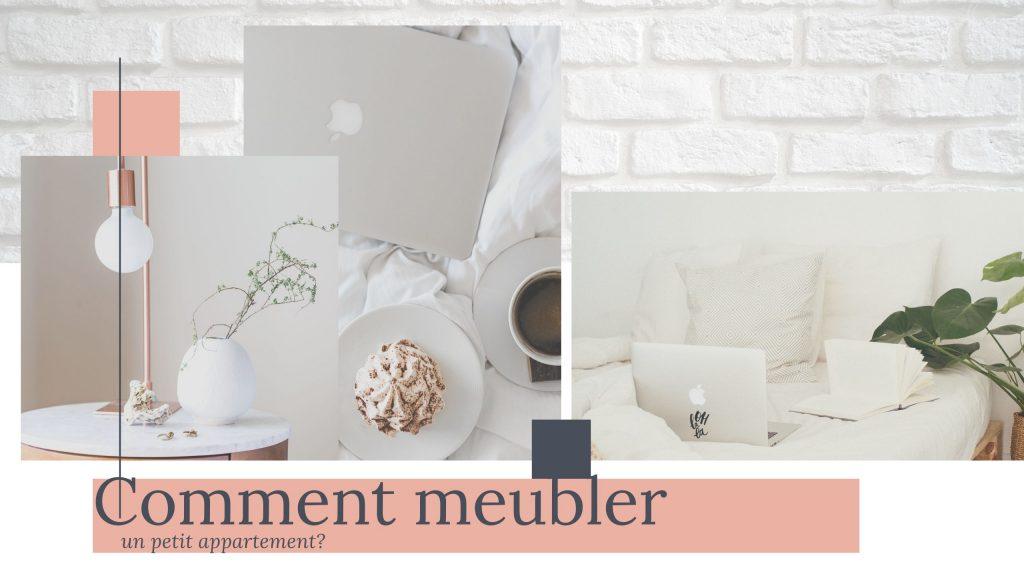 meubler petit appartement style scandinave